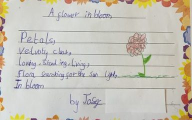 Year Four are budding poets!