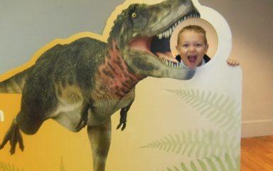 Reception Dinosaur Museum Visit