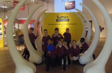 Year 4 visit The Great North Museum
