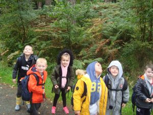 Year 5 Residential Visit to Whithaugh Park