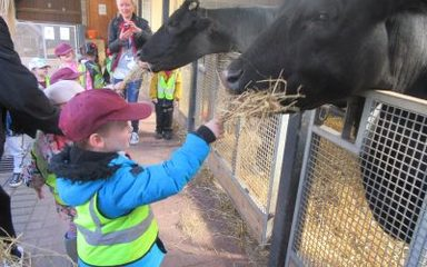 Nursery have fun on the farm!