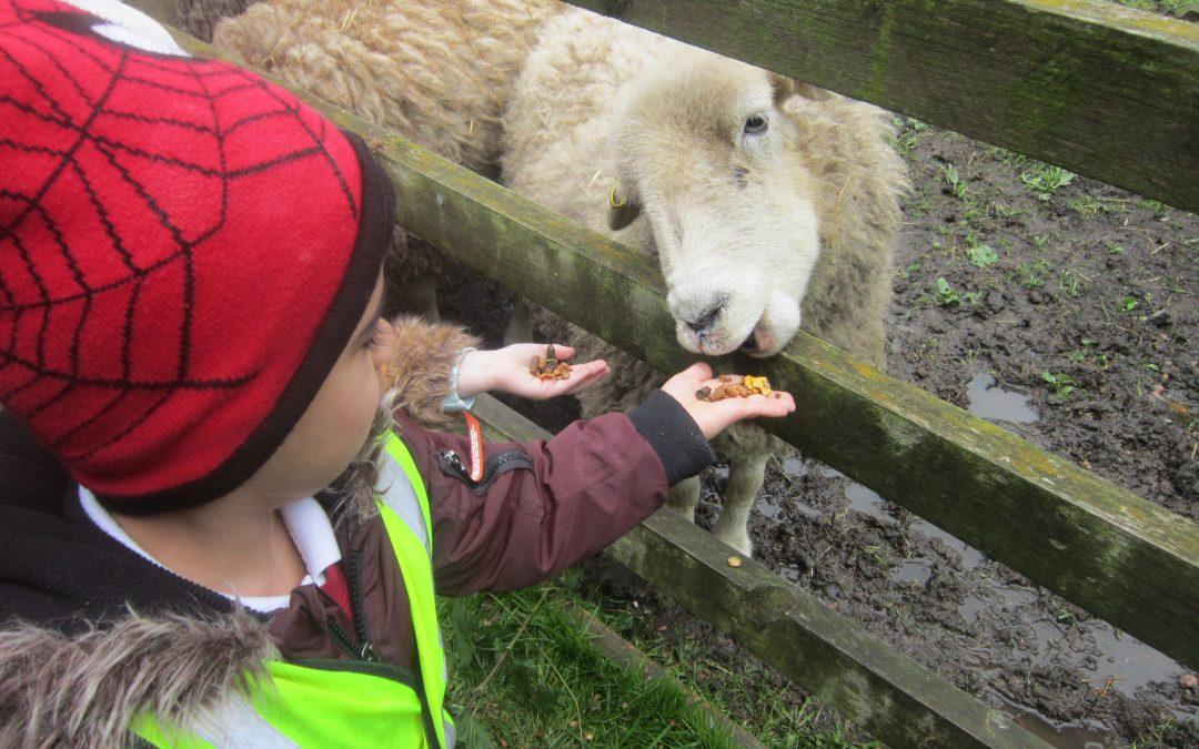 Nursery get farming!